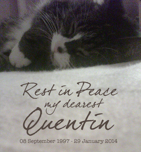 Rest in Peace my dearest Quentin